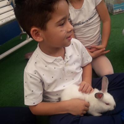 2019_04_17 - Páscoa educação infantil e 1º anos151