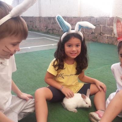 2019_04_17 - Páscoa educação infantil e 1º anos169