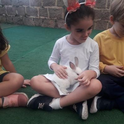 2019_04_17 - Páscoa educação infantil e 1º anos69