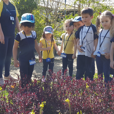 2019_10_22- Floricultura Winge Maternal15