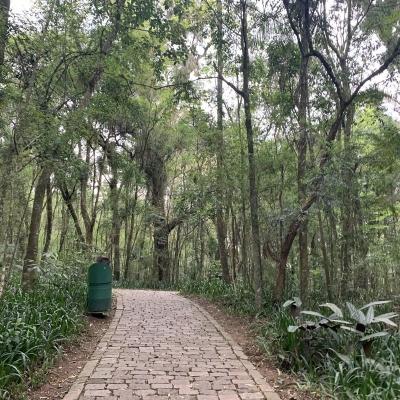 2019_10_25 - Viagem cultural Curitiba 7º ano37